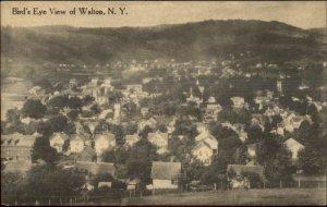 Walton NY Birdseye View of Homes c1910 Postcard