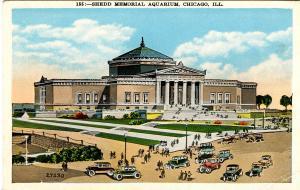 IL - Chicago. Shedd Memorial Aquarium