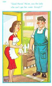 Plumber Lady Needs Tap Water Maid Apron Uniform Old Sexy Humour Seaside Postcard
