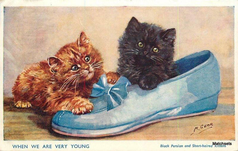 1958 Artist impression Two cute kittens playing on shoe J Salmon postcard 7670