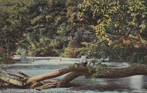 ASHEVILLE , North Carolina , 1908 ; Fishing in Mountain Stream , Land of the sky