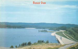 Beaver Dam & Lake Springs Arkansas AR Chrome Postcard