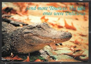 "Alligator, ""Send More Tourists, the last ones were delicious"", unused"
