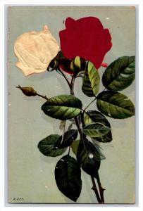 FLOWERS   Satin Roses