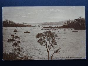 Australia NSW SYDNEY HARBOUR from South Head Road - Old Postcard by Swain & Co.