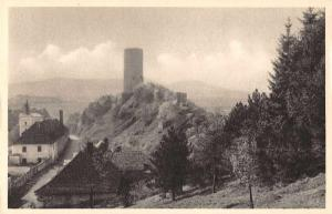 Czech Slovakia Zebraka Castle Ruins Scenic View Antique Postcard J77512