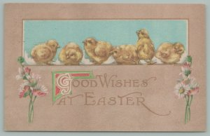 Easter~Chicks Hatch In A Row In Window~Look Around~Colored Daisies~Tan Back~1917