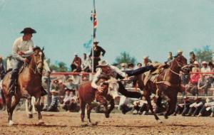 Wild Steer Decorating , Calgary , Alberta , Canada , 50-60s
