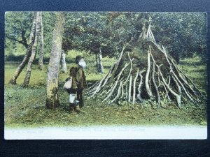 Hampshire Country Life BRUSHER MILLS New Forest Snake-Catcher - Old Postcard