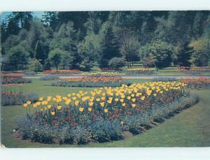 Unused Pre-1980 TOWN VIEW SCENE Vancouver British Columbia BC p8054