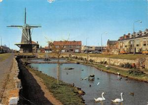 Netherlands De Molen Monster Mill Birds Swan