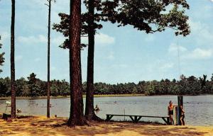 LAUREL, DE Delaware  TRAP POND~Boys Swimming  SUSSEX COUNTY  Roadside Postcard
