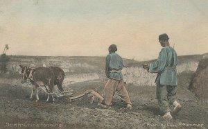 CE-004 China North China Farming Tinted Postcard Divided Back Chas. Gammon