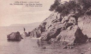 Toulon Wales Pine Tree Cote D'Azur French Cote D'Azur Postcard