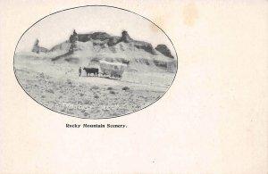 LPS01 Oregon Trail Ezra Meeker Rocky Mountain Scenery Tortoise Rock Postcard
