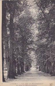 Une Allee De Blanchefontaine, An Alley Of Blanchefontaine, Langres (Haute Mar...