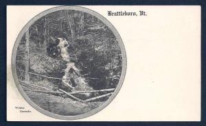 Wilder Cascade Brattleboro Vermont unused c1905