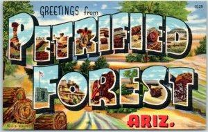PETRIFIED FOREST National Park Large Letter Postcard Curteich Linen 1B-H1686