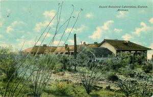Desert Botanical Laboratory Tucson Arizona 1911 Postcard 4162