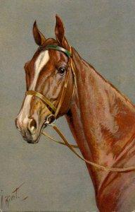 Horse - Stehli Series #150.  Artist: Rivst