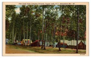 Mid-1900s Fish Creek State Campground, Tupper Lake, NY Postcard