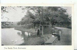 Essex Postcard - The Castle Park - Colchester - Ref 17164A