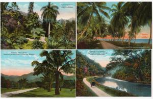 4 - Jamaica Cards