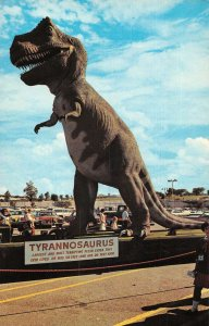 Glen Rose Texas Giant Dinosaur Tracks Vintage Postcard AA15284