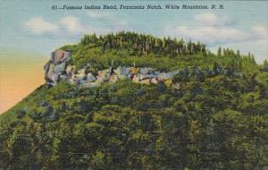 Famous Indian Head Franconia Notch White Mountains New Hampshire