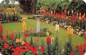 Bermuda Postcard Old Vintage Island Post Card Par-la-ville Gardens in Hamilto...
