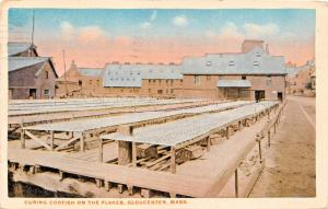 GLOUCESTER MASSACHUSETTS-CURING CODFISH ON THE FLAKES POSTCARD 1922 PSMK
