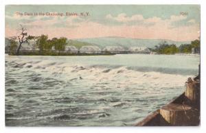Elmira NY Postcard Dam in the Chemung River Rubin Bros