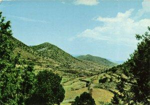 PC CPA SAUDI ARABIA, GREEN FIELDS OF ASSER, Modern Postcard (b15915)