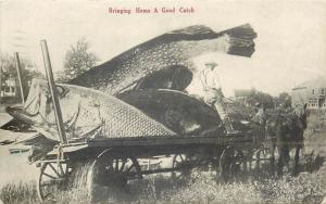 Fish exageration surrealism 1912 postcard - Bringing Home A Good Catch