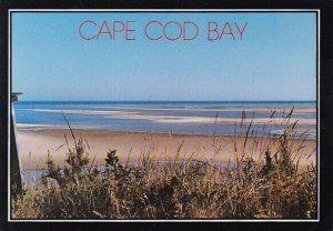 The Flats At Low Tide Cape Cod Massachusetts