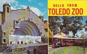 Ohio Toledo Hello From Toledo Zoo 1969