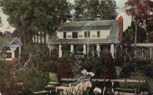 New York Saratoga Springs Chuancey Olcott's Cottage