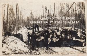 RP: PRINCE ALBERT , Sask., Canada , 00-10s ; Logging , Loading Sleds