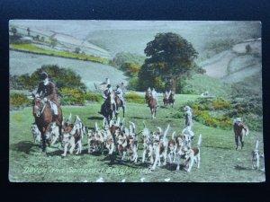 Hunting & Game Theme DEVON & SOMERSET STAGHOUND c1920 Postcard