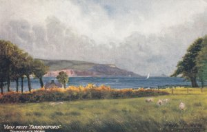 View from FARRINGFORD , Tennyson's Home , 00-10s TUCK 7101