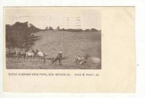 Scene in Grand View Park, Des Moines, Iowa, 1906