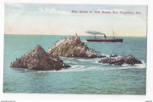 San Francisco CA Seal Rocks at Cliff House Steamer Ship Newman Postcard