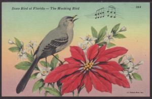Mocking Bird,Poinsettia Postcard