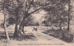 Maine York Along Chase's Lake The South Shore Drive