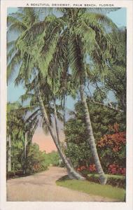 A Beautiful Driveway Palm Beach Florida