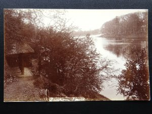 BINGHAM BOWER (near River Tweed?) Old RP Postcard by G.W. Gibson of Coldstream