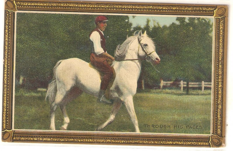 Man on his horse. Through his paces Old vintage American postcard