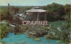 Postcard Old Texas Brackenridge Park San Antonio