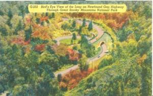 Bird's eye view of the Loop on Newfound Gap Highway, Grea...