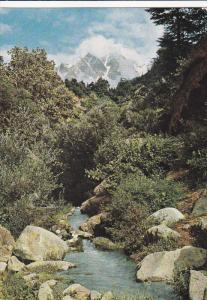Water-Spring, Swat Valley, Hindu Kush Mountains, AFGHANISTAN, 50-70'S